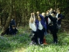 Foalhurst Woods 2